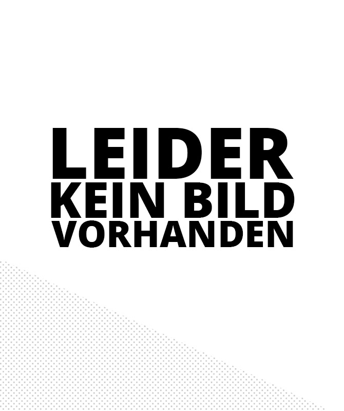 Controller für Mobilist Standard & XR